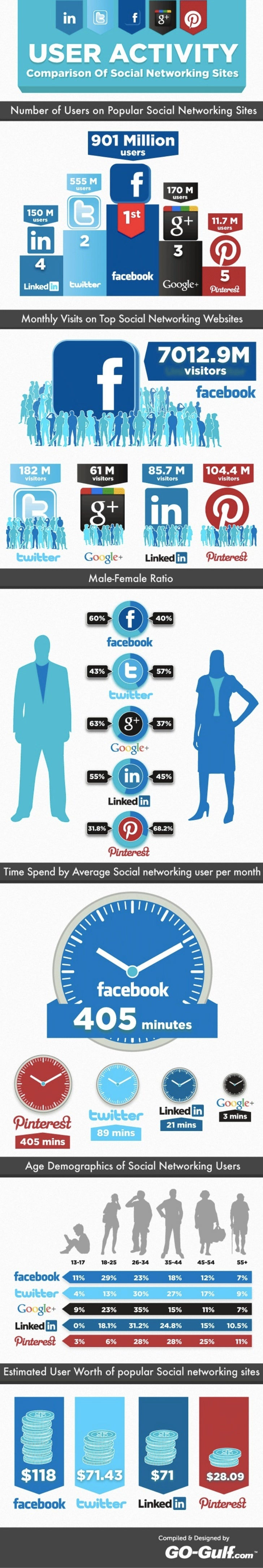 2012 Social Networking Users Infographic