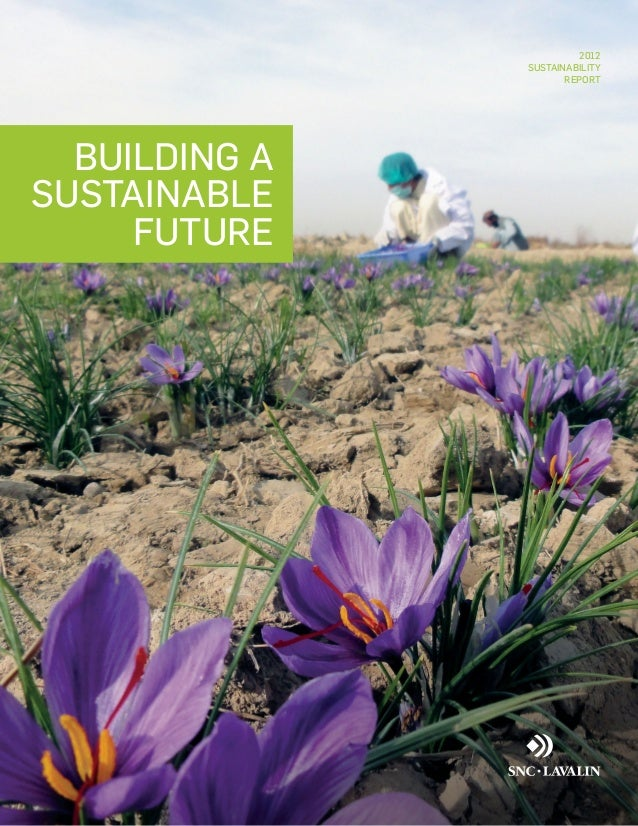 2012 SUSTAINABILITY REPORT  BUILDING A SUSTAINABLE FUTURE