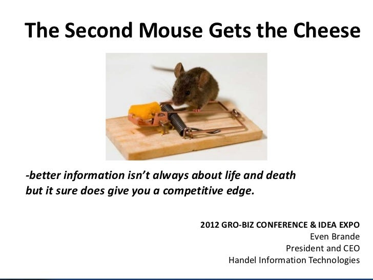 The Second Mouse Gets the Cheese-better information isn't always about life and deathbut it sure does give you a competiti...