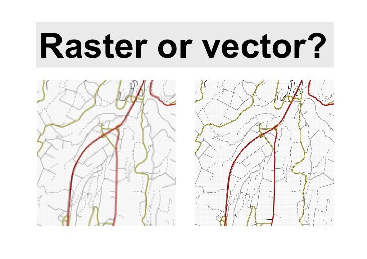Raster or vector?