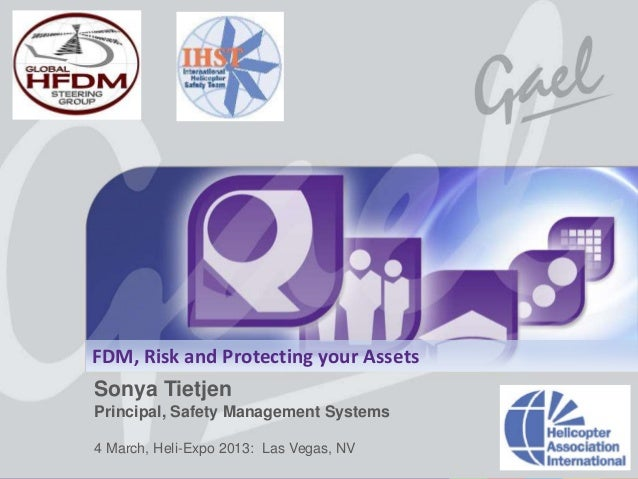 FDM, Risk and Protecting your Assets                   Sonya Tietjen                   Principal, Safety Management System...