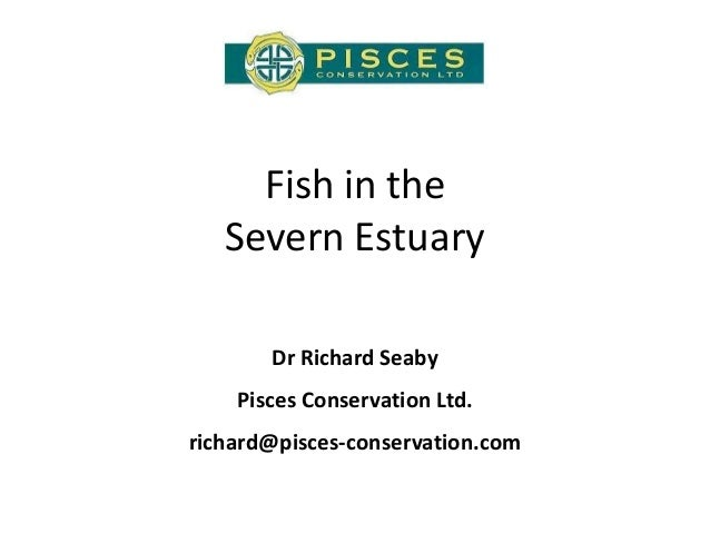 Fish in the Severn Estuary Dr Richard Seaby Pisces Conservation Ltd. richard@pisces-conservation.com