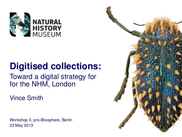 Digitised collections:Toward a digital strategy forfor the NHM, LondonVince SmithWorkshop 3, pro-iBiosphere, Berlin23 May ...
