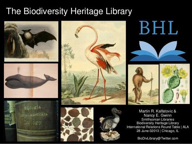The Biodiversity Heritage LibraryMartin R. Kalfatovic &Nancy E. GwinnSmithsonian LibrariesBiodiversity Heritage LibraryInt...