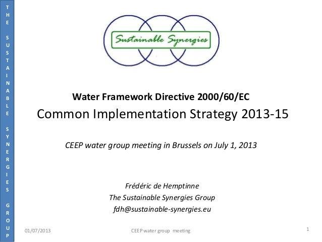 T H E S U S T A I N A B L E S Y N E R G I E S G R O U P Water Framework Directive 2000/60/EC Common Implementation Strateg...