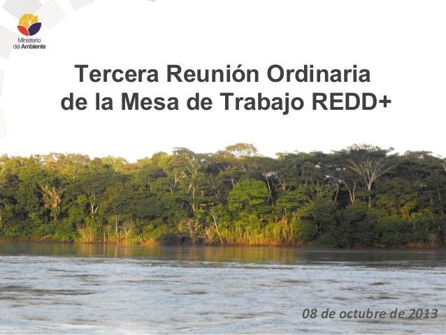 Tercera Reunión Ordinaria de la Mesa de Trabajo REDD+  08 de octubre de 2013
