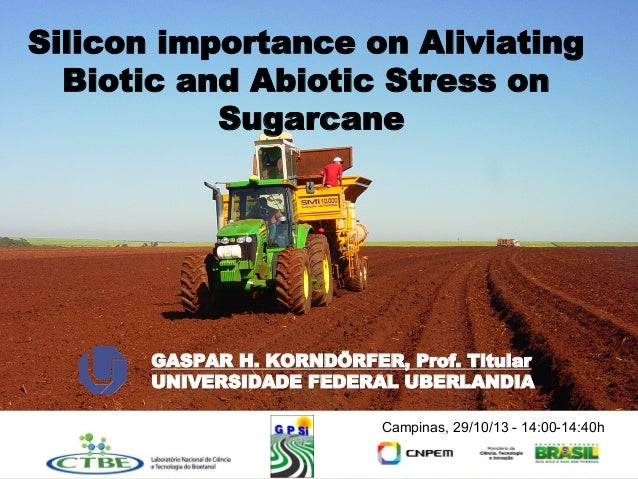 Silicon importance on Aliviating Biotic and Abiotic Stress on Sugarcane  GASPAR H. KORNDÖRFER, Prof. Titular UNIVERSIDADE ...