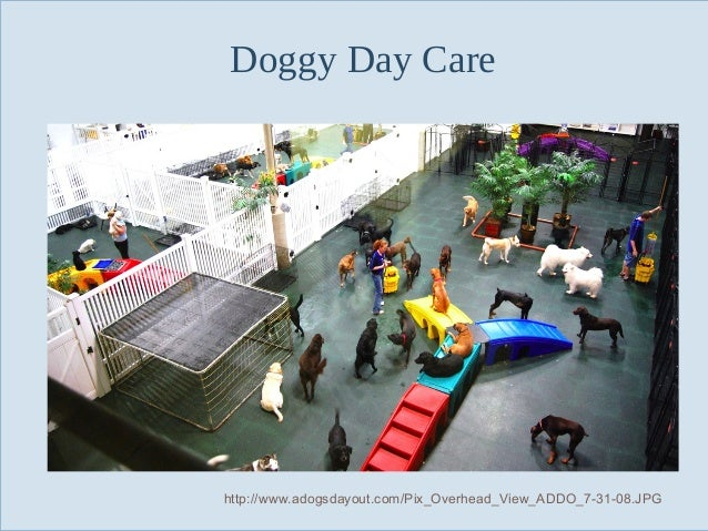Doggy Day Care  Slide 12  http://www.adogsdayout.com/Pix_Overhead_View_ADDO_7-31-08.JPG
