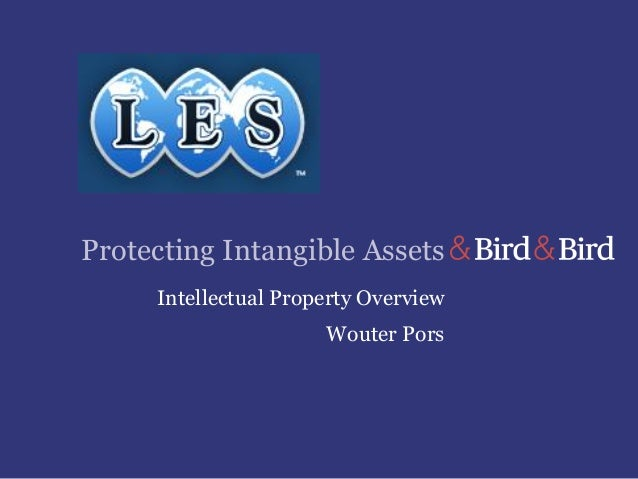 Protecting Intangible Assets Intellectual Property Overview Wouter Pors