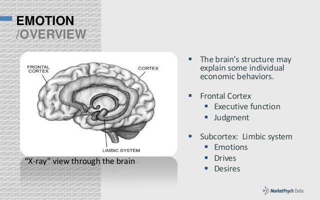EMOTION /OVERVIEW  The brain's structure may explain some individual economic behaviors.  Frontal Cortex  Executive fun...