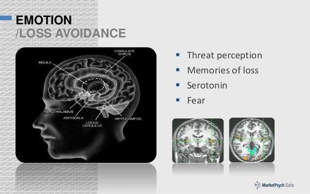 EMOTION /LOSS AVOIDANCE      Threat perception Memories of loss Serotonin Fear