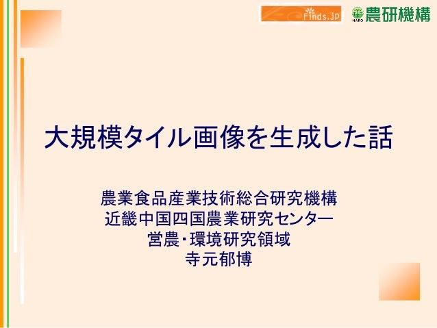 大規模タイル画像を生成した話 農業食品産業技術総合研究機構 近畿中国四国農業研究センター 営農・環境研究領域 寺元郁博