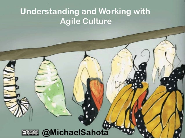 Understanding and Working with Agile Culture  @MichaelSahota