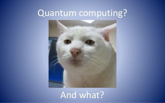2013 09 13 Quantum Computing Has Arrived S Nechuiviter