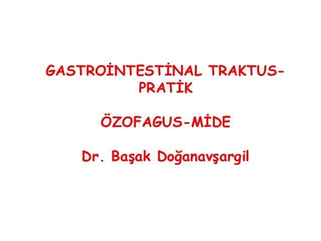 GASTROİNTESTİNAL TRAKTUS- PRATİK ÖZOFAGUS-MİDE Dr. Başak Doğanavşargil