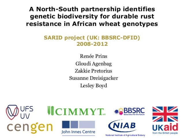 A North-South partnership identifies genetic biodiversity for durable rust resistance in African wheat genotypes SARID pro...
