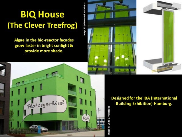 2013 Top 10 List Of Hot Trends In Greenroof Amp Greenwall Design
