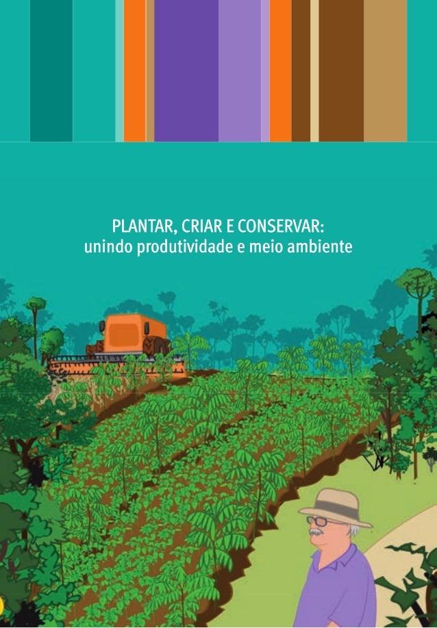 PLANTAR, CRIAR E CONSERVAR: unindo produtividade e meio ambiente