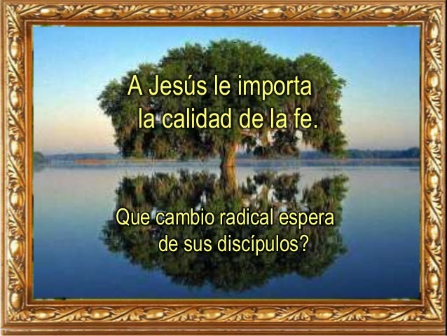 A Jesús le importa la calidad de la fe. Que cambio radical espera de sus discípulos?