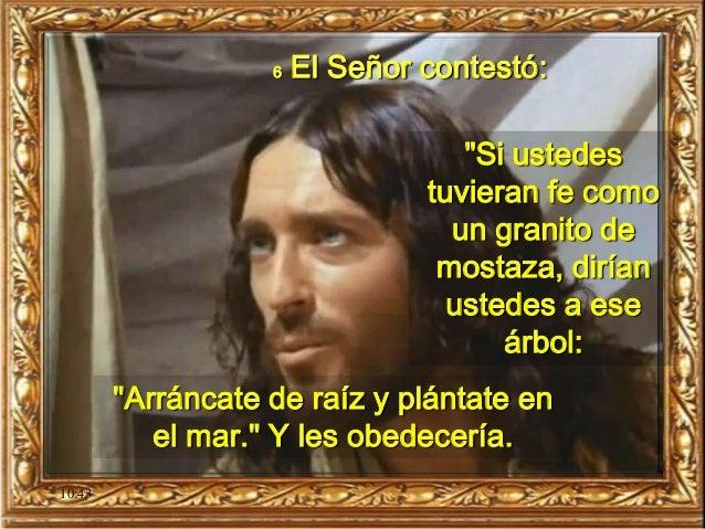 """10:43 6 El Señor contestó: """"Si ustedes tuvieran fe como un granito de mostaza, dirían ustedes a ese árbol: """"Arráncate de r..."""