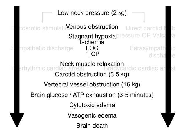 Direct carotid bulb pressure OR Valsalva Parasympathetic discharge Bradycardic cardiac arrest Pericarotid stimulation Symp...