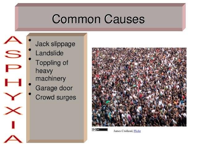 Common Causes • Jack slippage • Landslide • Toppling of heavy machinery • Garage door • Crowd surges James Cridland, Flickr