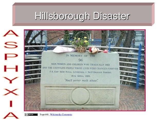 Hillsborough Disaster Superbfc, Wikimedia Commons