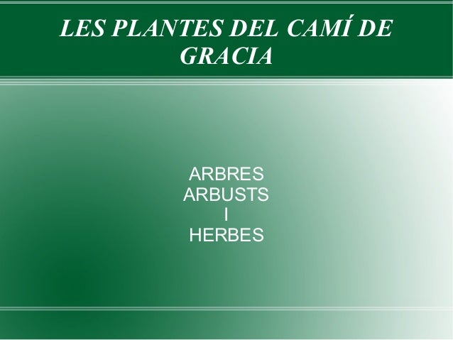 LES PLANTES DEL CAMÍ DE        GRACIA        ARBRES        ARBUSTS           I        HERBES