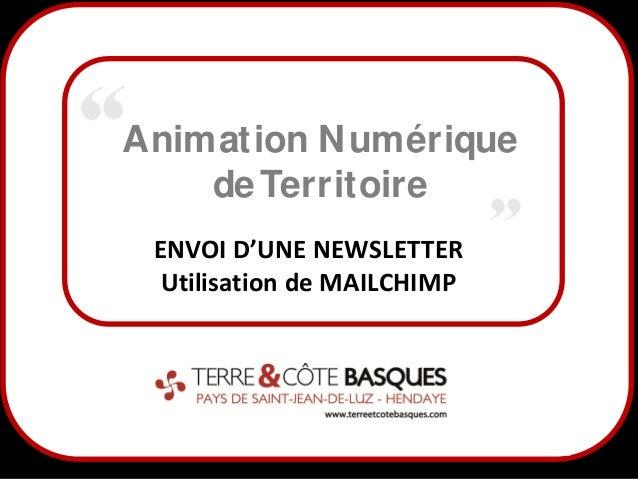 Animation N umérique de Territoire ENVOI D'UNE NEWSLETTER Utilisation de MAILCHIMP  1