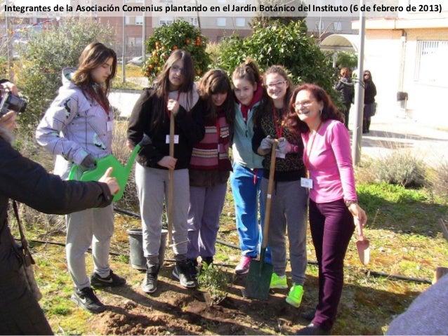 Integrantes de la Asociación Comenius plantando en el Jardín Botánico del Instituto (6 de febrero de 2013)