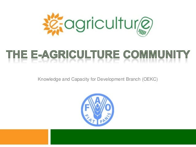 Knowledge and Capacity for Development Branch (OEKC)
