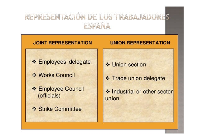 JOINT REPRESENTATION UNION REPRESENTATION Union section Trade union delegate Industrial or other sector union Employees' d...