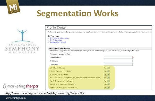 Mintigo: The Savvy Marketer's Guide to B2B Segmentation
