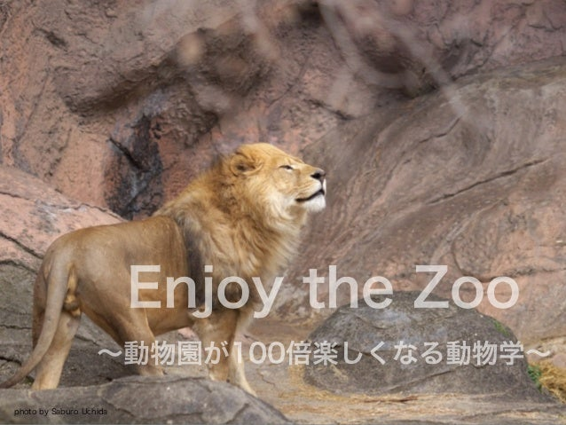 Enjoy the Zoo ∼動物園が100倍楽しくなる動物学∼ photo by Saburo Uchida