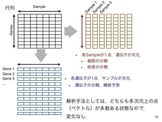 • 各Sampleが1点.遺伝子が次元. • 細胞の分類 • 疾患の分類 19 Genes Sam ple 1 Sam ple 2 Sam ple 3 • 各遺伝子が1点.サンプルが次元. • 遺伝子の分類,機能予測 Sample Gene 1...