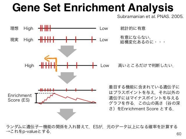 Gene Set Enrichment Analysis High Low High Low 理想 現実 統計的に有意 有意にならない, 結構変化あるのに・・・ High Low 高いところだけで判断したい. ランダムに遺伝子ー機能の関係を入れ...