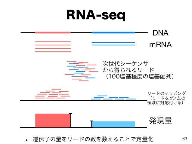 RNA-seq • 遺伝子の量をリードの数を数えることで定量化 DNA mRNA 次世代シーケンサ から得られるリード (100塩基程度の塩基配列) リードのマッピング (リードをゲノムの 領域に対応付ける) 発現量 63