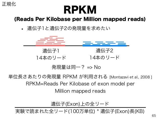 RPKM (Reads Per Kilobase per Million mapped reads) • 遺伝子1と遺伝子2の発現量を求めたい 14本のリード 14本のリード 遺伝子1 遺伝子2 発現量は同一? => No 単位長さあたりの発現...