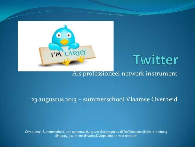 Als professioneel netwerk instrument 23 augustus 2013 – summerschool Vlaamse Overheid Obv cursus Summerschool, een samenwe...