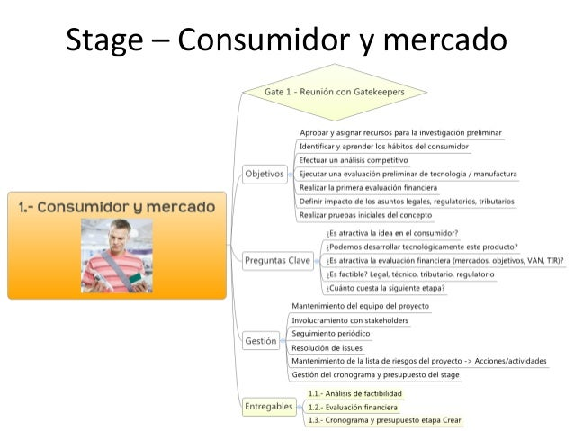 stage gate process resumen