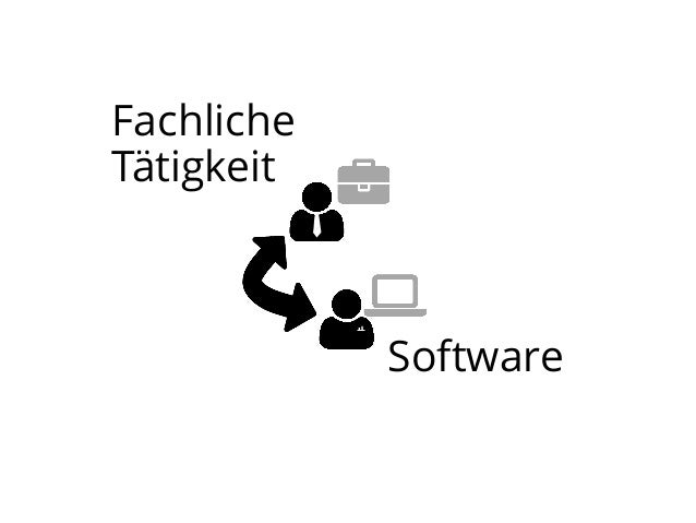 Fachliche Tätigkeit  Software