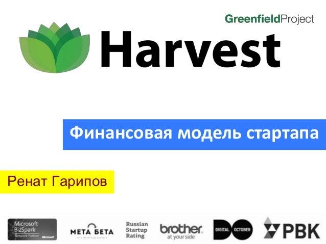 Ренат Гарипов Финансовая модель стартапа