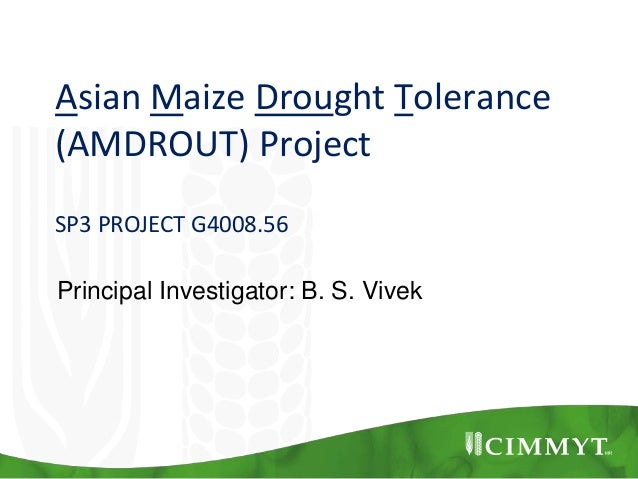 Asian Maize Drought Tolerance (AMDROUT) Project SP3 PROJECT G4008.56 Principal Investigator: B. S. Vivek