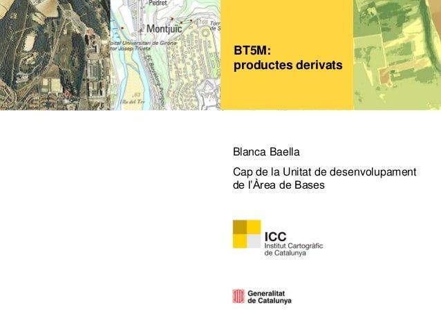 BT5M: productes derivats  Blanca Baella Cap de la Unitat de desenvolupament de l'Àrea de Bases