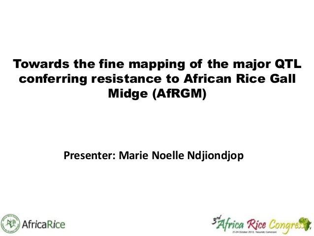 Towards the fine mapping of the major QTL conferring resistance to African Rice Gall Midge (AfRGM)  Presenter: Marie Noell...