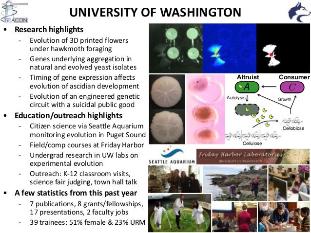 UNIVERSITY OF WASHINGTON • Research highlights - Evolution of 3D printed flowers under hawkmoth foraging - Genes underlyin...