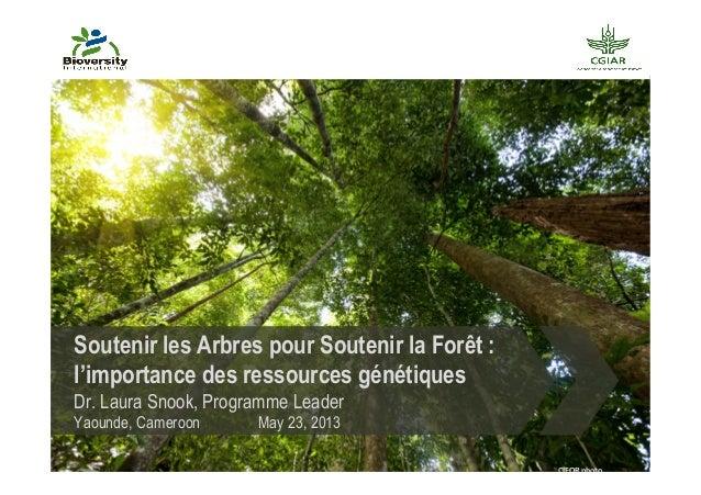 Soutenir les Arbres pour Soutenir la Forêt :l'importance des ressources génétiquesDr. Laura Snook, Programme LeaderYaounde...