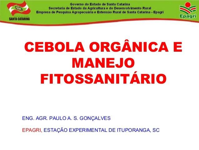 CEBOLA ORGÂNICA E MANEJO FITOSSANITÁRIO ENG. AGR. PAULO A. S. GONÇALVES EPAGRI, ESTAÇÃO EXPERIMENTAL DE ITUPORANGA, SC