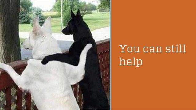 You can still help  @wilreynolds