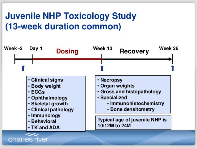 Reproductive and Developmental Toxicity Studies - SNBL JAPAN